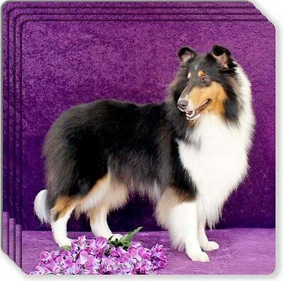 Collie Rough Rubber Coaster Set