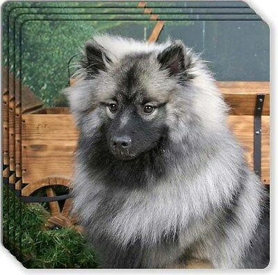 Keeshond Rubber Coaster Set