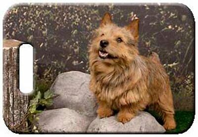 Set of 2 Norwich Terrier Luggage Tags