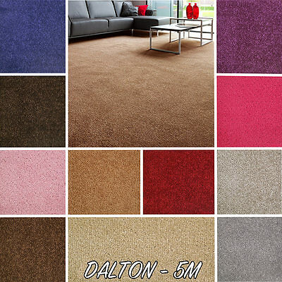 NEW! Quality Felt Backed Twist Pile Carpet , CHEAP - 5M Width!