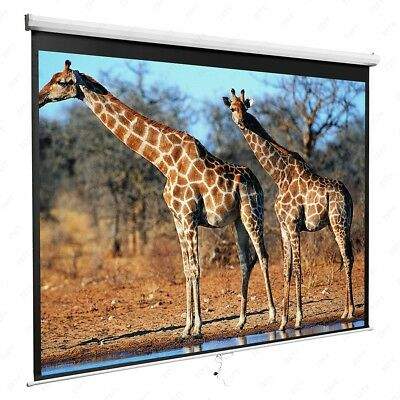 "White 119"" 1:1 Projection Screen Manual Pull Down Home HD Movie Theater Matte"
