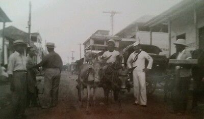WW2 soldiers and mule vintage photo b&w A1