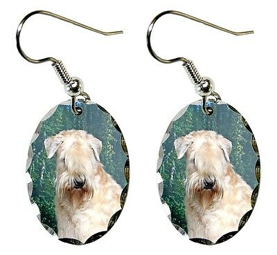 Soft Coated Wheaten Earrings