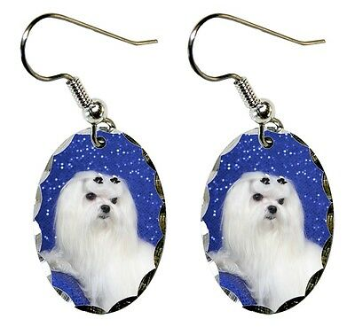 Maltese Earrings