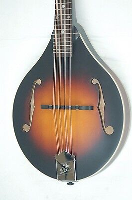 The Loar LM-175 Grassroots Series A-Style Mandolin   BLEM *B0172