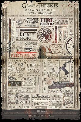 GAME OF THRONES (INFOGRAPHIC) - Maxi Poster 61cm x 91.5cm PP33780 - 056