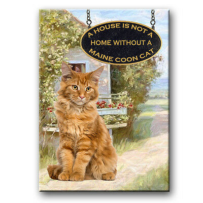 MAINE COON CAT A House is Not a Home Fridge Magnet No 2