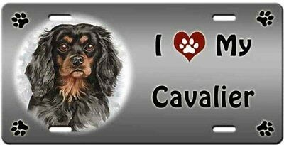 Cavalier King Charles Spaniel License Plate - Love