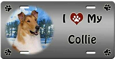 Collie Smooth License Plate - Love