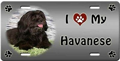 Havanese License Plate - Love