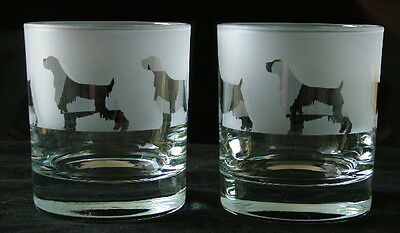 English Springer Spaniel Dog Whisky Glasses by Glass in the Forest.