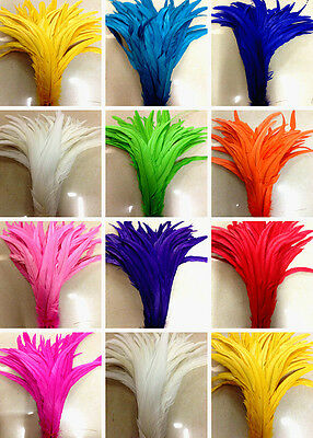 Wholesale! 5-100 pcs Cute rooster tail feathers 10-12 inches / 25-30 cm 13 color