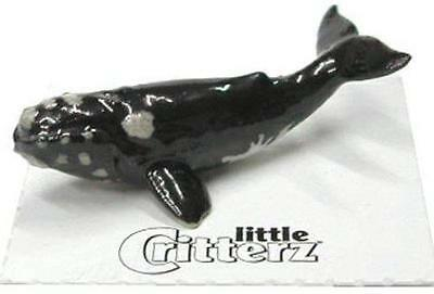 "Little Critterz Miniature Porcelain Animal Figure Right Whale ""Wart"" LC230"
