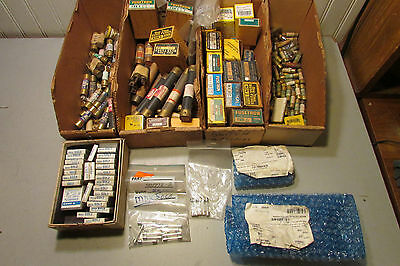 Massive Lot of Fuses. Various Small Sizes. 100's of Fuses!