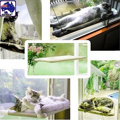 Cat Pet Sucker Hanging Bed Seat Hammock Home Suction Window Mounted PCATB 3662