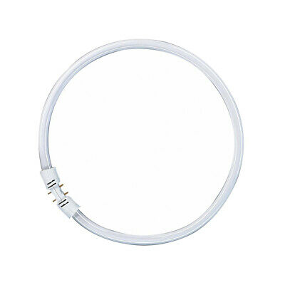Osram Leuchtstofflampe T5 FC 22W 865 Circline Ring Lumilux Cool Daylight 2GX13