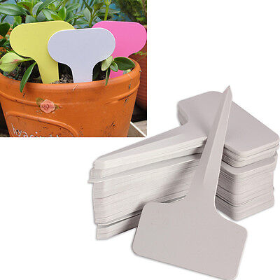 100pcs 6 x10cm Plastic Plant T-type Tags Markers Nursery Garden Labels Gray