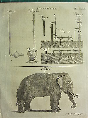 1797 Georgian Print ~ Electricity Various Apparatus ~ Elephant