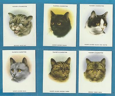 Players cigarette cards - CATS - Full mint condition set.