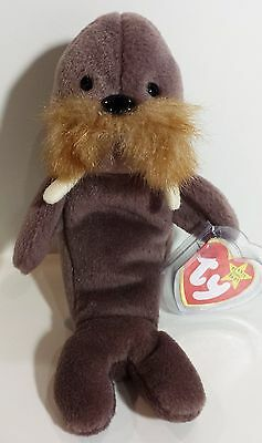 """TY Beanie Babies """"JOLLY"""" the WALRUS - MWMTs! CHECK OUT MY BEANIES & SAVE $$$"""