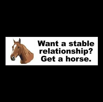 "Funny ""WANT A STABLE RELATIONSHIP? GET A HORSE."" decal BUMPER STICKER, if, you"