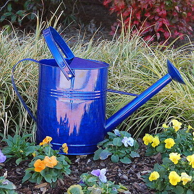 Griffith Creek Designs 1 Gallon Metal Watering Can