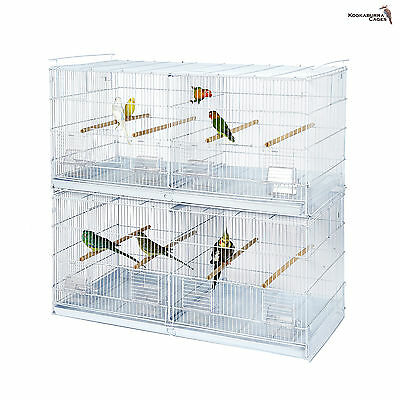 Kookburra Pine Double Breeding Cage / Small parrots - Finches - Canary - Budgie