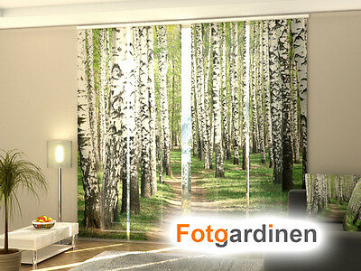 fotogardinen birken schiebevorhang schiebegardinen 3d fotodruck ma anfertigung eur 15 00. Black Bedroom Furniture Sets. Home Design Ideas