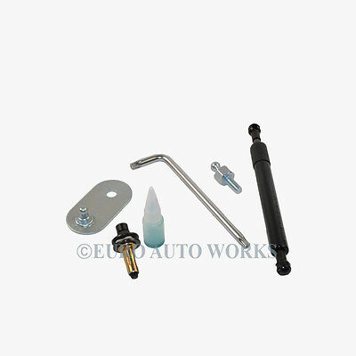 For Ford Tailgate Lift Support Assist Shock Premium DZ203 (1kit)