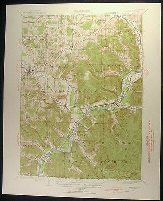 Randolph New York Cattaraugus County 1955 vintage USGS original Topo chart map