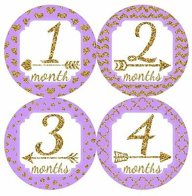 12 Baby Monthly Milestone Stickers Lavender Gold MS025 Shower Gift Photo Prop