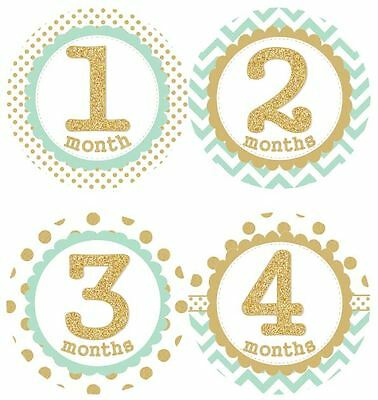 12 Baby Monthly Milestone Stickers MInt Gold MS006 Baby Shower Gift Photo Prop