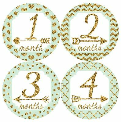 12 Baby Monthly Milestone Stickers Mint Gold MS021 Baby Shower Gift Photo Prop