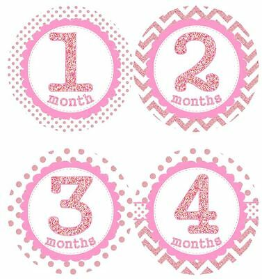 12 Baby Girl Monthly Milestone Stickers Pink Sparkle MS004 Shower Gift Photos
