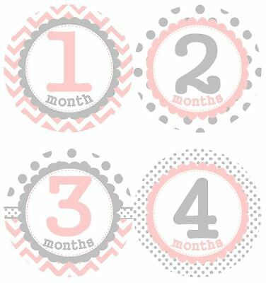 12 Baby Girl Monthly Milestone Stickers Pink Grey MS005 Baby Shower Gift Photos