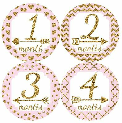 12 Baby Girl Monthly Milestone Stickers Pink Gold MS020 Shower Gift Photo Prop