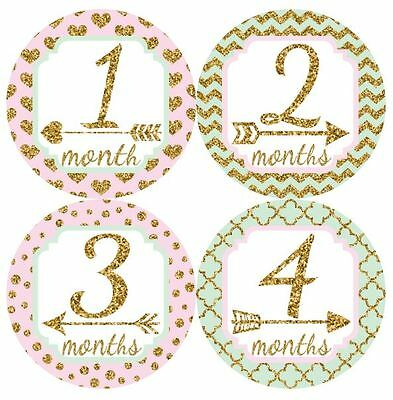 12 Baby Monthly Milestone Stickers Mint Pink Gold MS022 Shower Gift Photo Prop