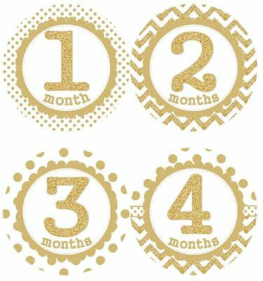 12 Baby Girl Monthly Milestone Stickers Gold MS002 Baby Shower Gift Photo Prop