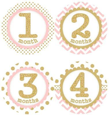 12 Baby Girl Monthly Milestone Stickers Pink Gold MS001Shower Gift Photo Prop