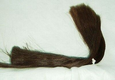 Horse Hair, Natural Brown, 1 Ounce, XL 22-26 inch Inch