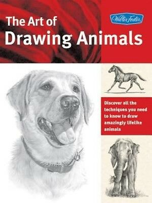 The Art of Drawing Animals by Stacey Nolon Paperback Book (English)