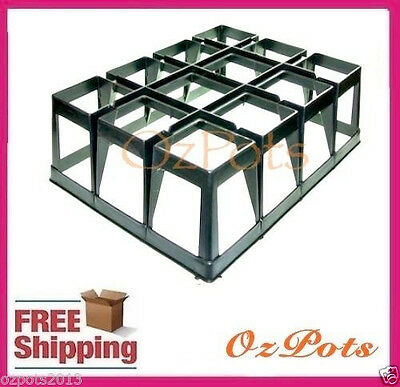 12 Cell Air Pruning Tray for 90mm Pots - Olive, Citrus Propagation