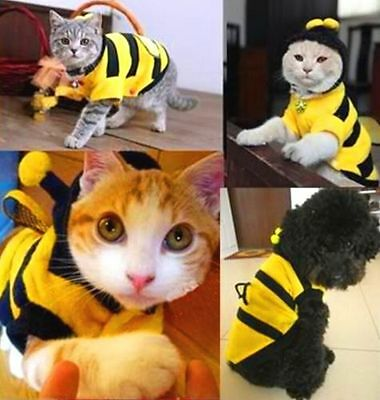 FD3881 Pet Dog Cat Bumble Bee Dress Up Costume Apparel Doggie Hoodies Coats