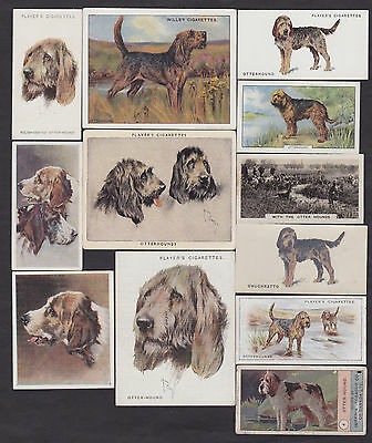 12 Different Vintage OTTERHOUND Tobacco/Candy/Tea/Promo Dog Cards