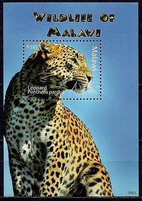 Malawi Leopard Panther Endangered Animals Fauna m/s MNH