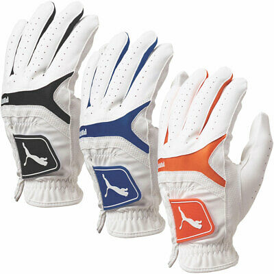 Puma Golf 2017 Sport Performance Players Golf Glove - MLH - Multi Pack Options