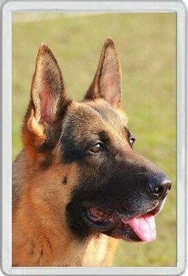 Alsatian - Jumbo Fridge Magnet Dog Dogs Pup Pups Puppies German Shepherd   Xxx