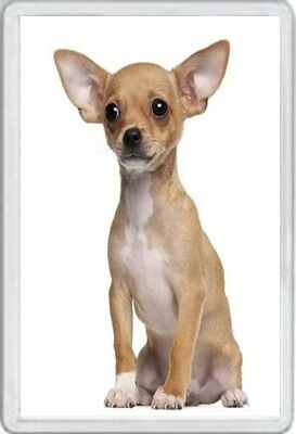Chihuahua - Jumbo Fridge Magnet- Dog Pup Pups Puppies Dogs Canine Kennel