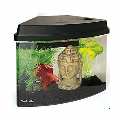 Superfish Cascade 4 Aquarium (Black) Including Led Lights & Internal Filter Pet