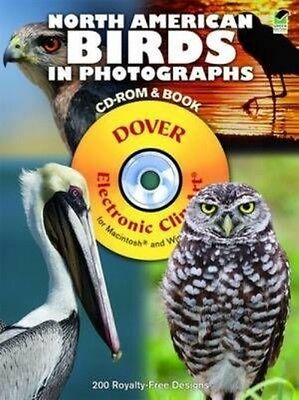 North American Birds in Photographs [With CDROM] by Steve Byland Paperback Book